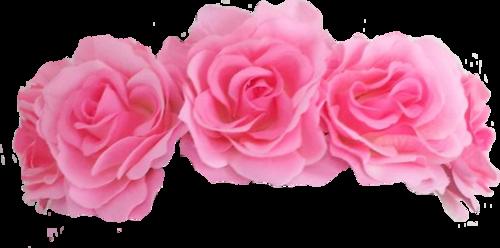 Roses Crown Png