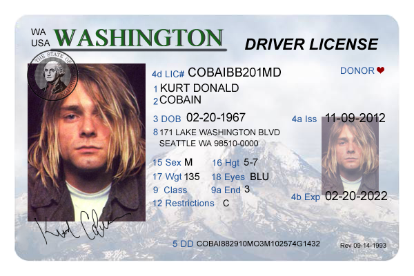 Washington Drivers License Editable PSD Template Download