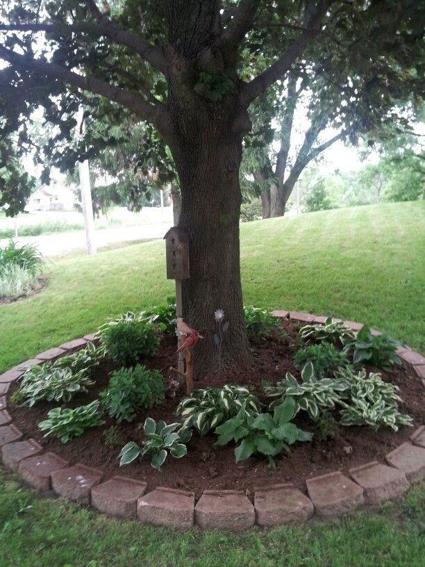 Pin En Garden