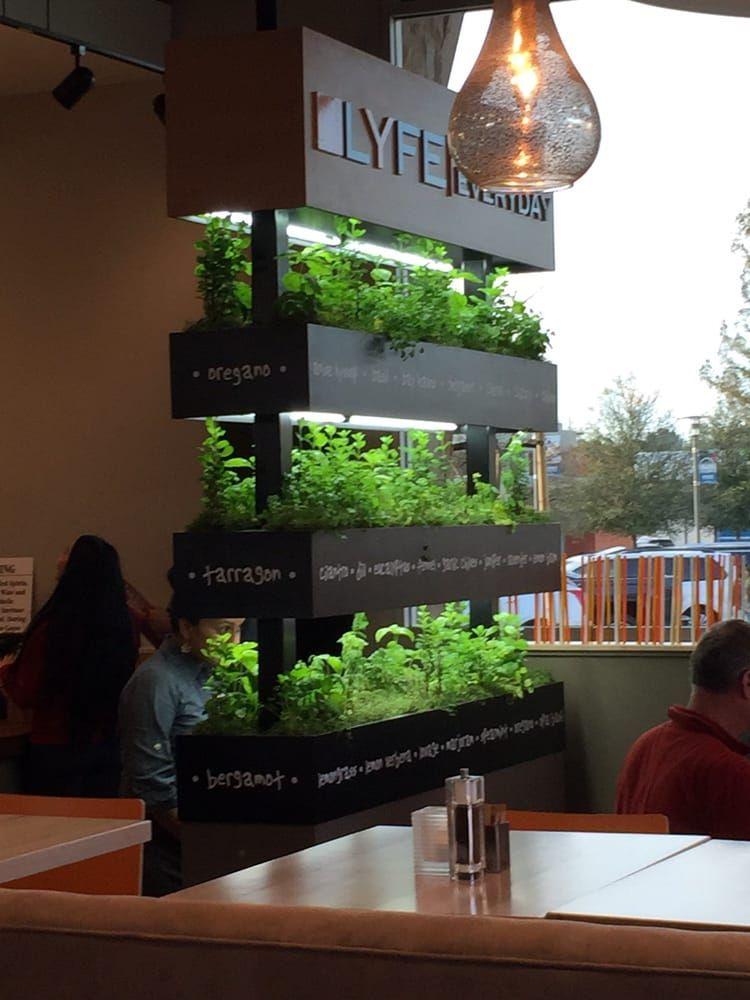 photo of lyfe kitchen cupertino ca united states herb garden they use it - Lyfe Kitchen Cupertino