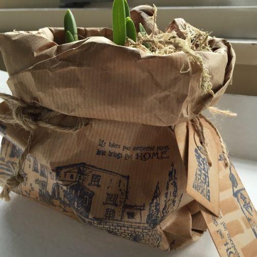 bestempelde planten zakjes, leuk met een potje #blauwe druifjes, #muscari