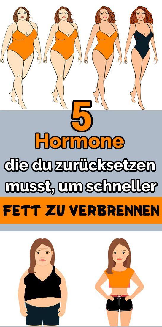 5 Hormone, die Sie zurücksetzen müssen, um schneller Fett zu verbrennen   - Gesundheit und fitness -...