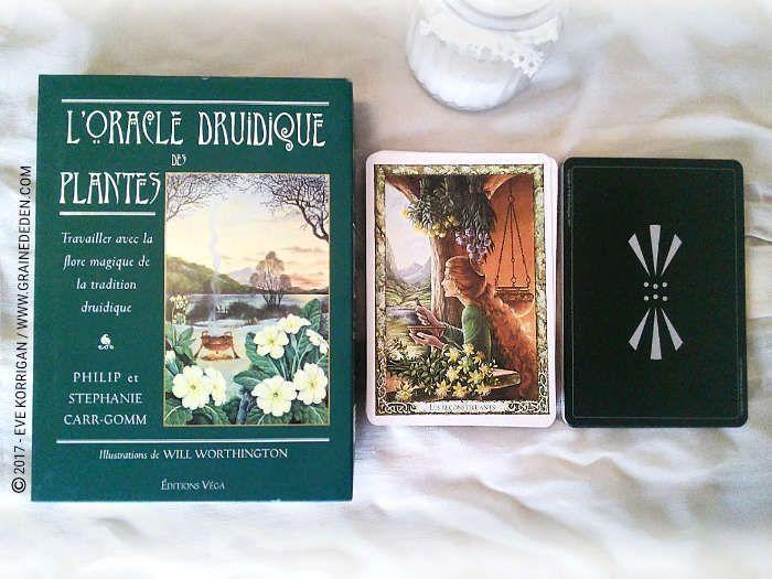 L Oracle Druidique Des Plantes De Philip Et Stephanie Carr Gomm Druidique Tarot Divinatoire Cartes Oracle