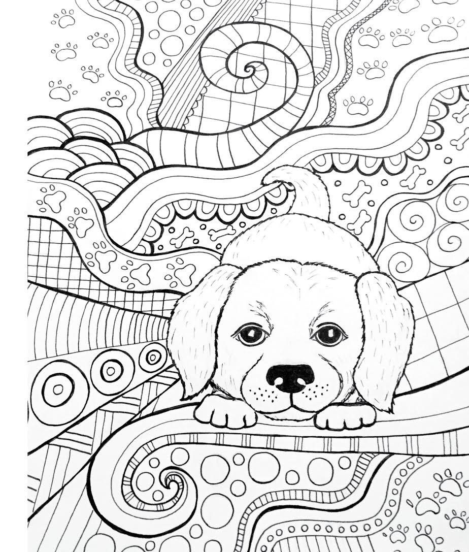 Amazon Com Zendoodle Coloring Baby Animals Adorable Critters To Color And Display 9781250109026 Dog Coloring Book Dog Coloring Page Mandala Coloring Pages