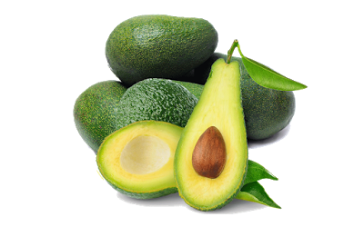 download gambar clipart alpukat alpukat buah nutrisi download gambar clipart alpukat