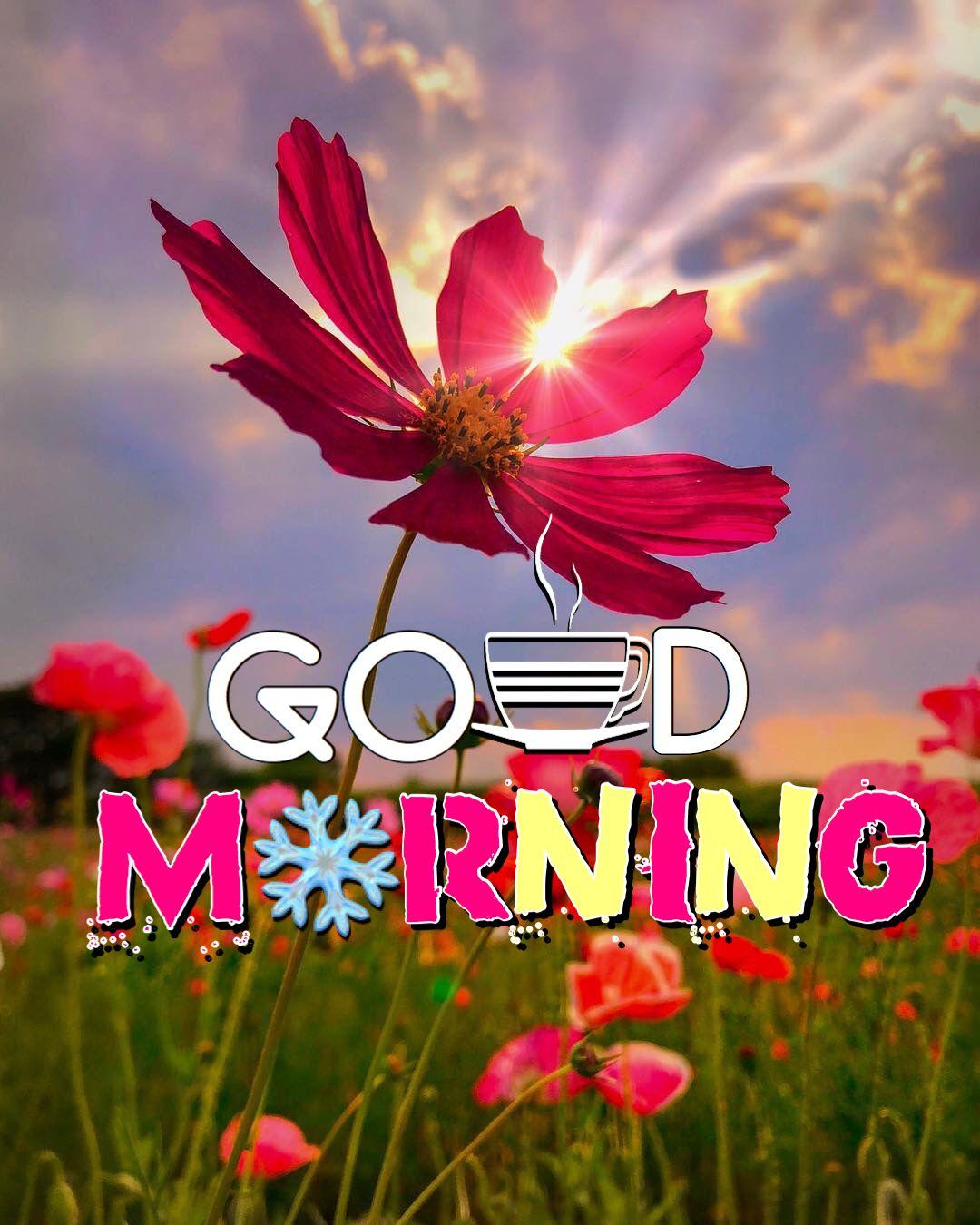 Good Morning Beautiful In Spanish Images - MORNING WALLS