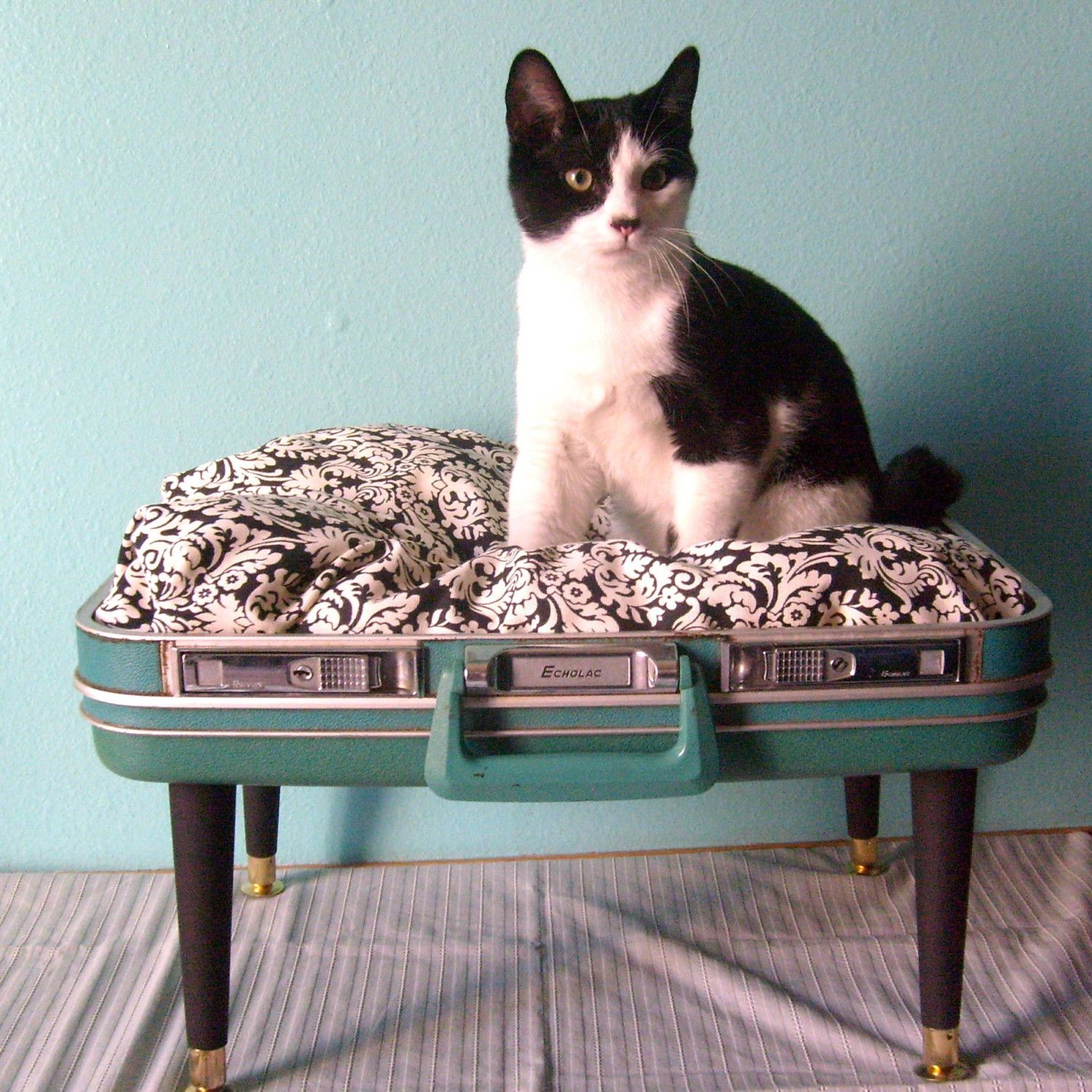 Upcycled Suitcase Into A Royal Pet Bed
