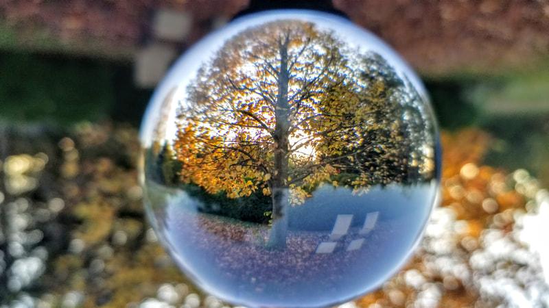 Mid Fall 2020 Tyrese Gould Jacinto Gourd Art Crystal Ball Fall