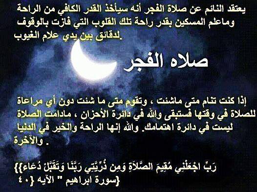 الكسل و الخمول ليس بالعمل الربح Quotes Arabic Quotes Wisdom