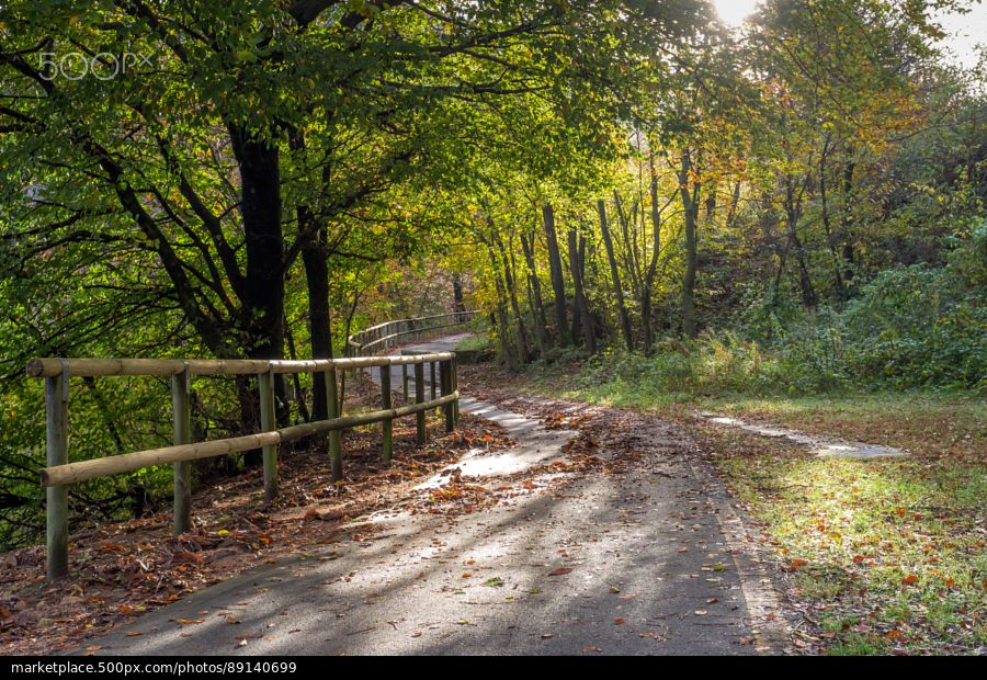 Bycicle Path - stock photo