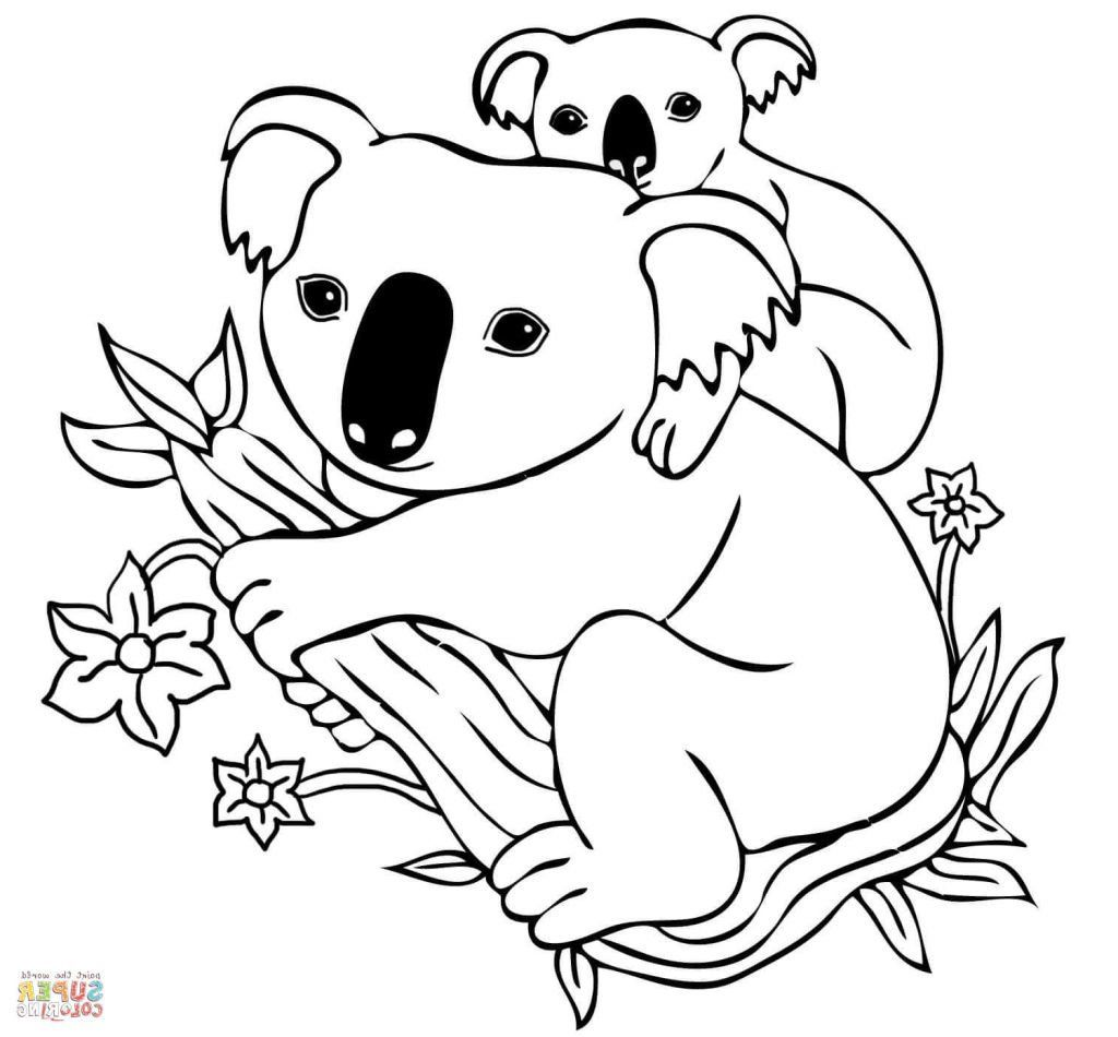 Koala Bear Coloring Pages Bear Coloring Pages Cartoon Coloring