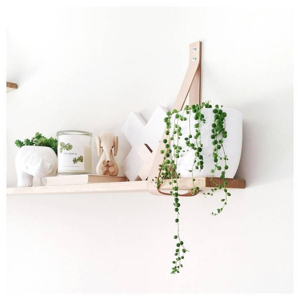The sexiest shelfies on instagram wall ideas shelves and instagram