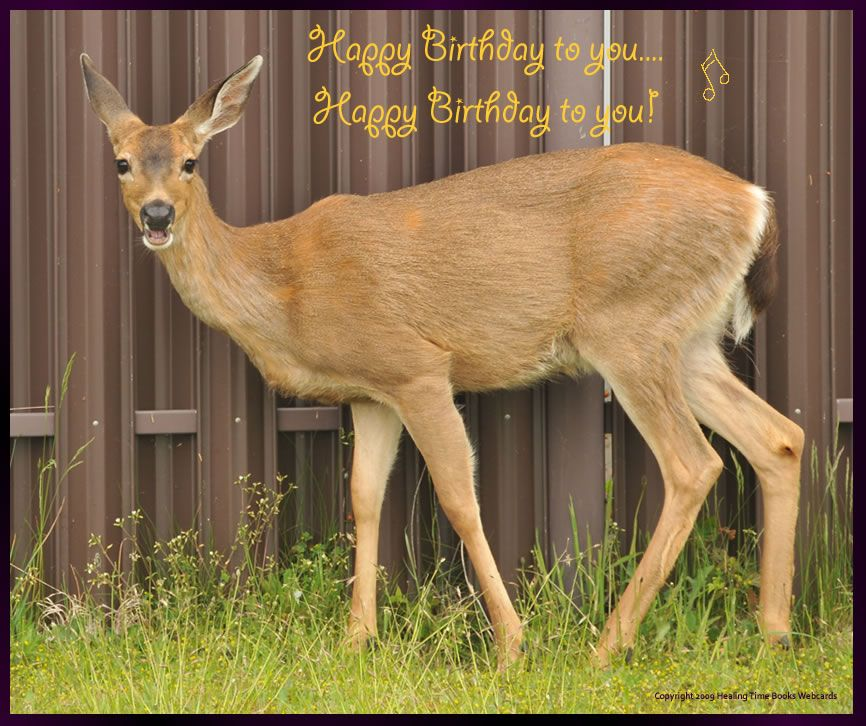 Happy Birthday Pictures For Men With Deer