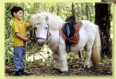 A boy and his pony.
