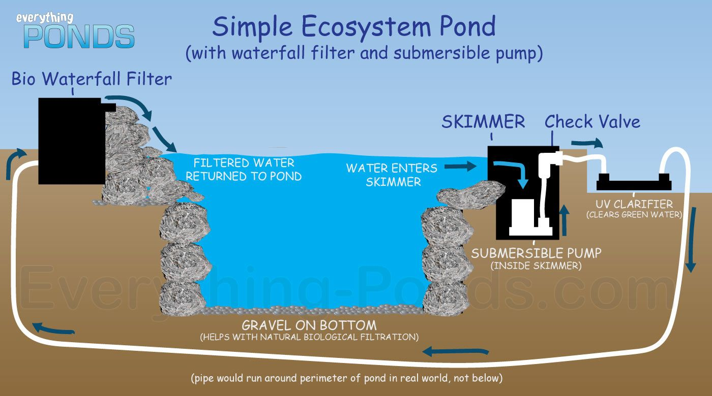 Everything ponds complete pond kits everything for Pond filtration system diagram