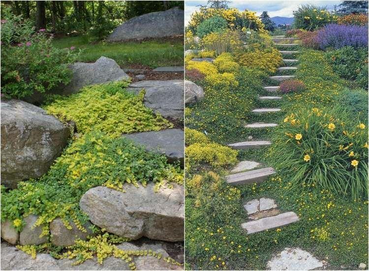amnager son jardin en pente conseils pratiques et photos - Jardin Japonais En Pente