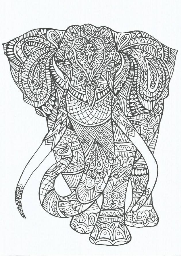 Trendspotting: Adult Coloring Books | Animal Coloring Pages