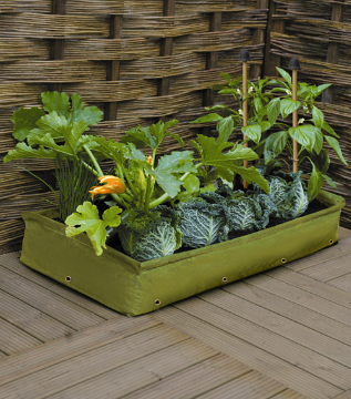 Soft Bodied Woven Polyethylene Fabric Raised Garden Bed - Grow: Garlic Onion Scallion Shallot Leeks with the need for a yard