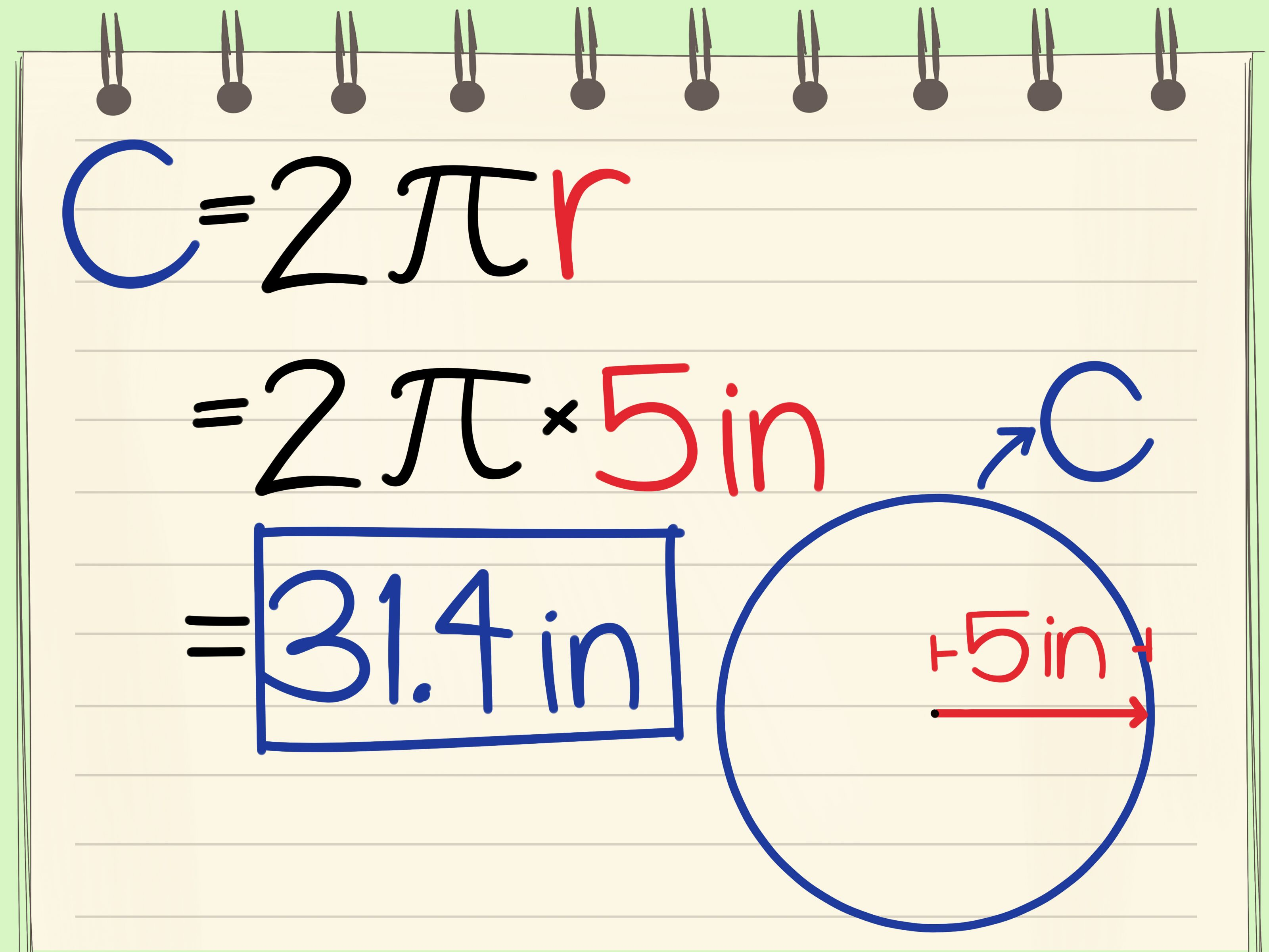 How To Calculate The Circumference Of A Circle Via