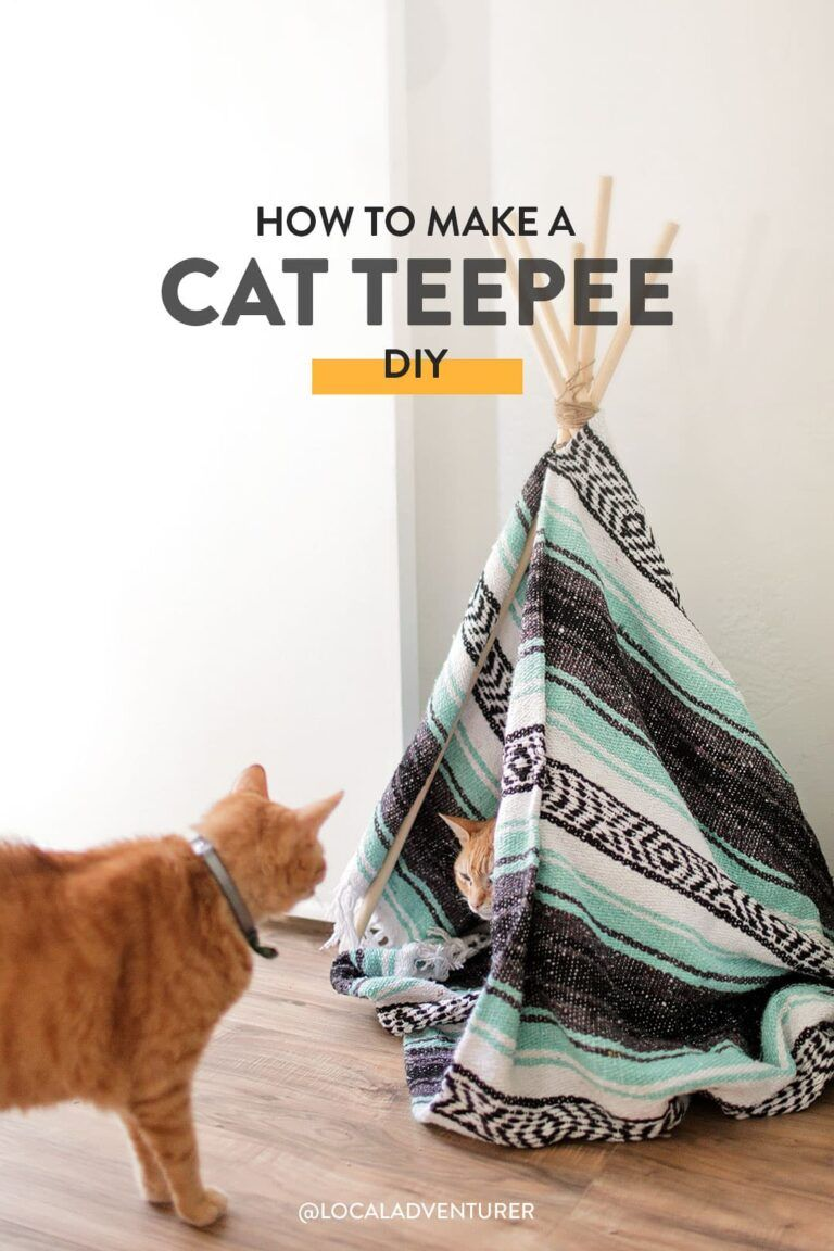 How to Make a DIY Cat Teepee Your Cats Will Absolutely Love // Local Adventurer #diy #petsdiy #catsdiy #cat #cats #localadventurer #catteepee