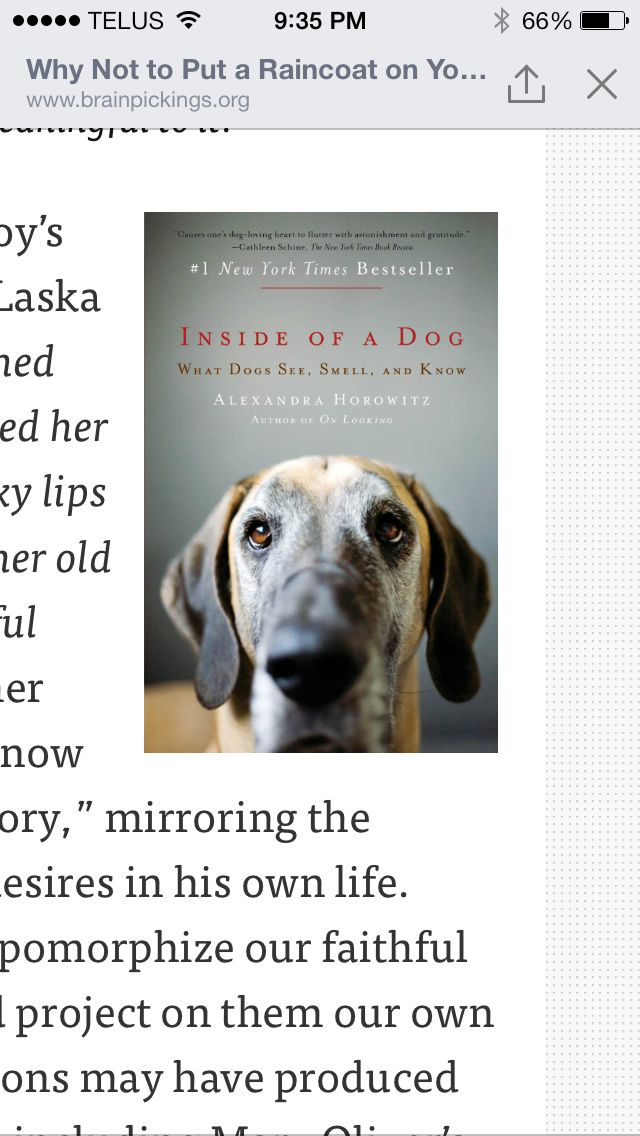 Pin by Ashley Reid on Books to Read   What dogs, Dog ...