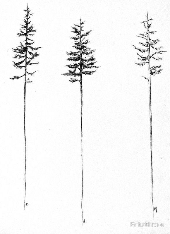 Photo of 'The Pines' par ErikaNicole – Etudes d'arbres minces en graphite. Aimez-vous ça …