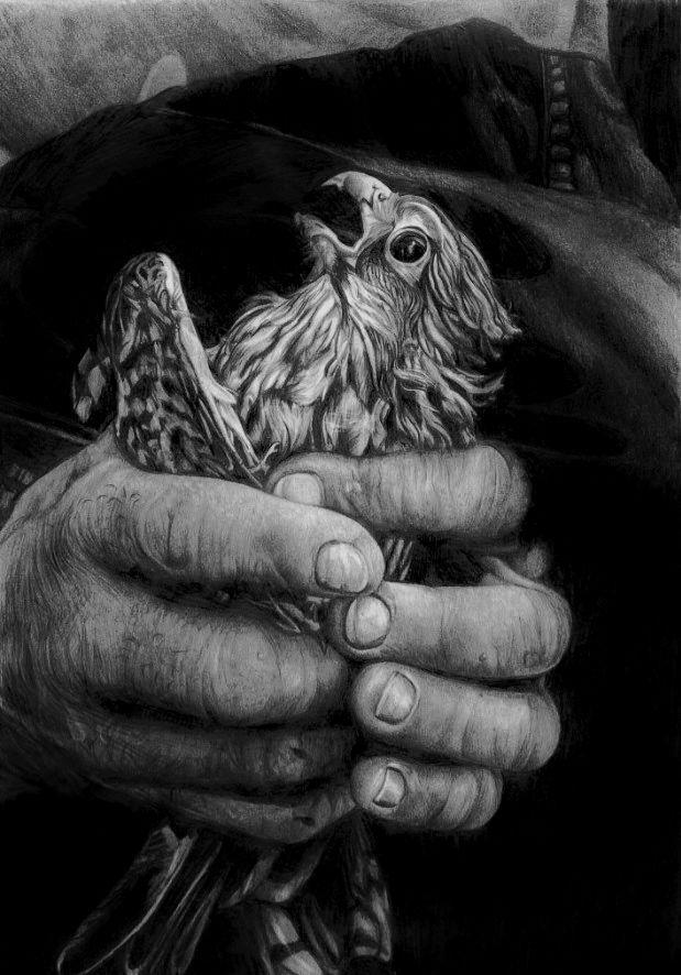 Help By Annmari96 On Deviantart Animal Photography Wild Animals Pictures Wildlife Photography