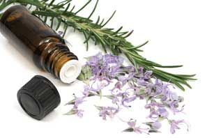 The most popular form of herbal medication available today, tinctures are highly concentrated liquid extracts of herbs. The ease of use and prolonged shelf life have given tinctures great appeal to the busy lifestyle of modern herbal enthusiasts.