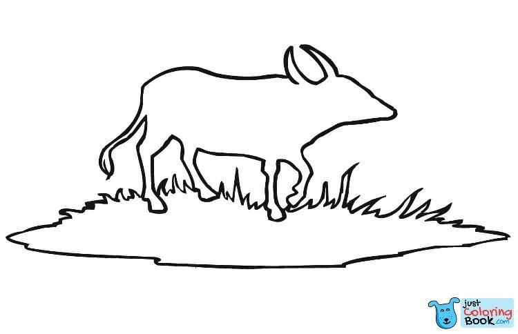 Water Buffalo Outline Coloring Page Free Printable With Water