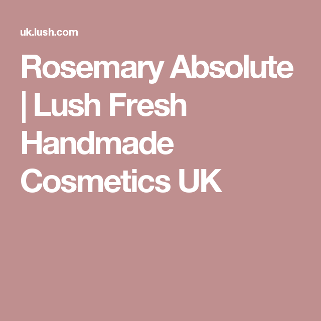 Rosemary Absolute | Lush Fresh Handmade Cosmetics UK