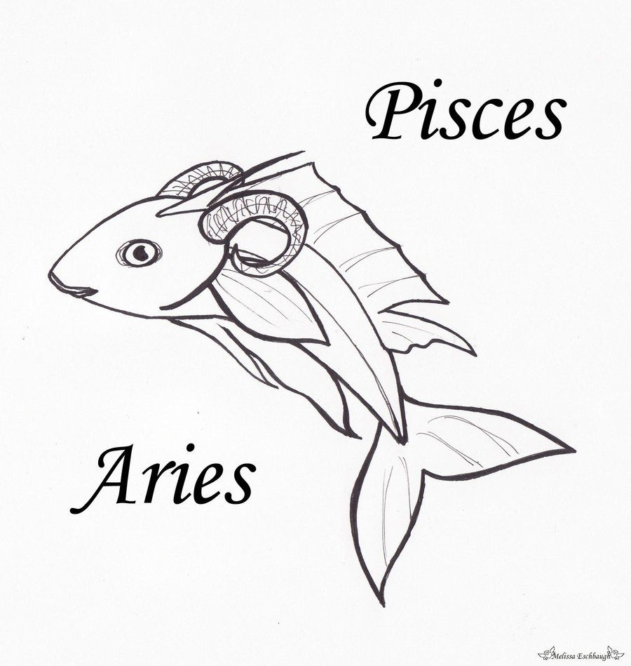 Piscesaries zodiac signs combinedth of my kids signs love the cusp of rebirth water fire pisces aries cusp steam we put our own fires out biocorpaavc Choice Image
