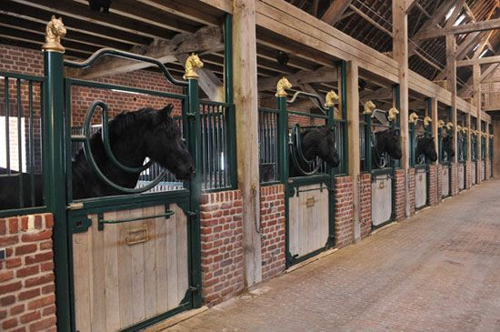 Brick Horse Stable Barn, Belgium. Iu0027d Rather Do A Red Brick With A  Traditional Style, But Yeah: Brick. | Equine Facilities | Pinterest | Barn,  Horse And ...
