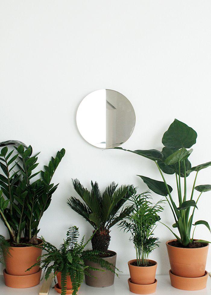 /bac-plantes-interieur-design/bac-plantes-interieur-design-25