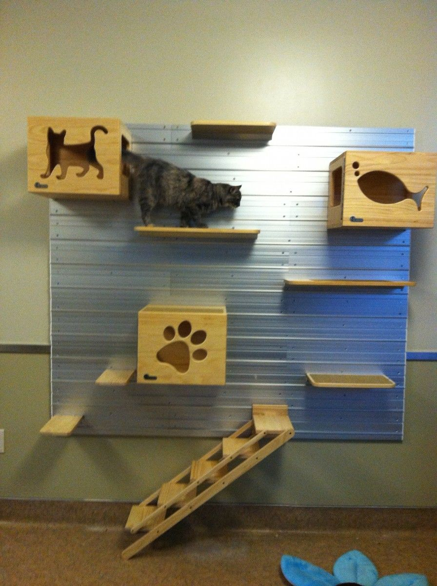 Higher Ground 3 Ways To Create Vertical Space For Cats
