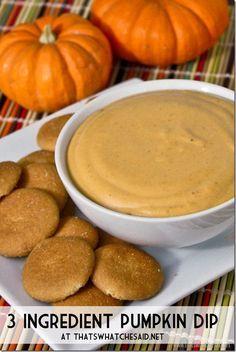 3 Ingredient Pumpkin Dip Recipe
