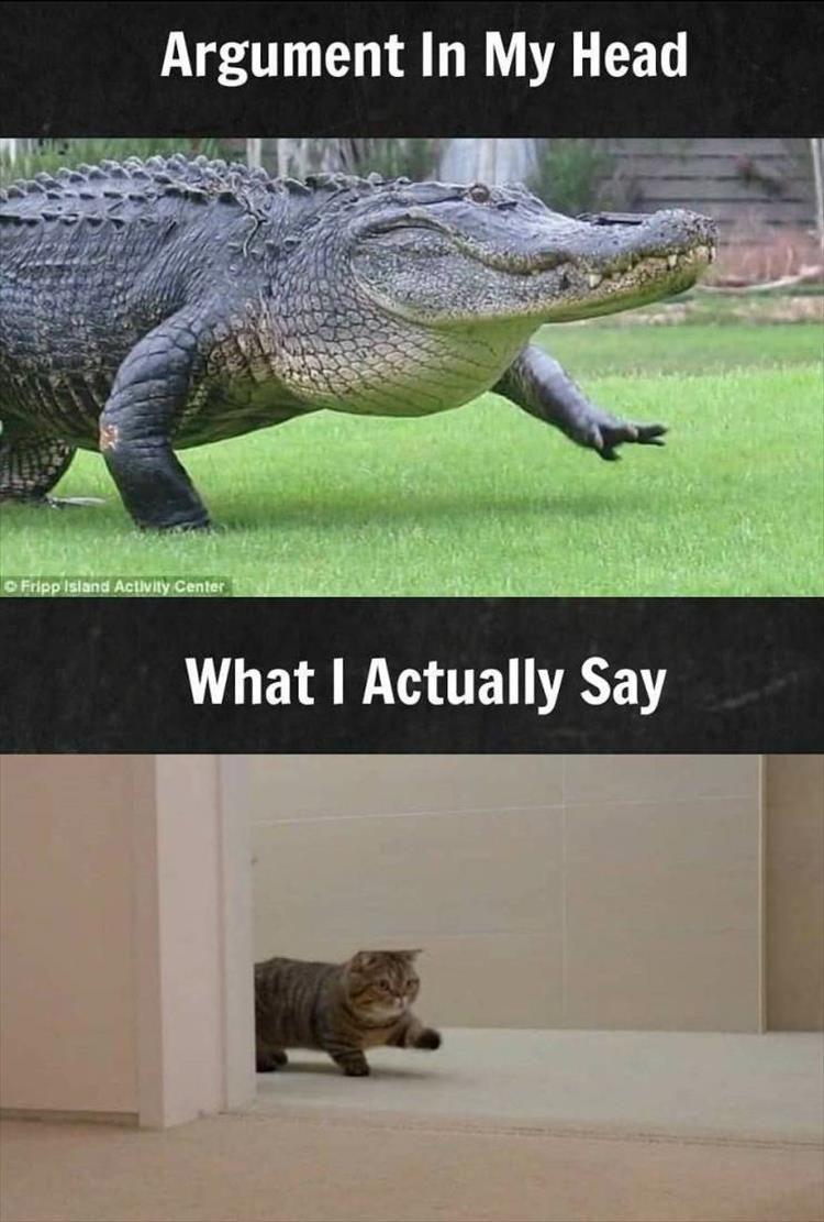 After Dark Funny Meme Dump 34 Pics Really Funny Memes Dark Humour Memes Funny Relationship Memes