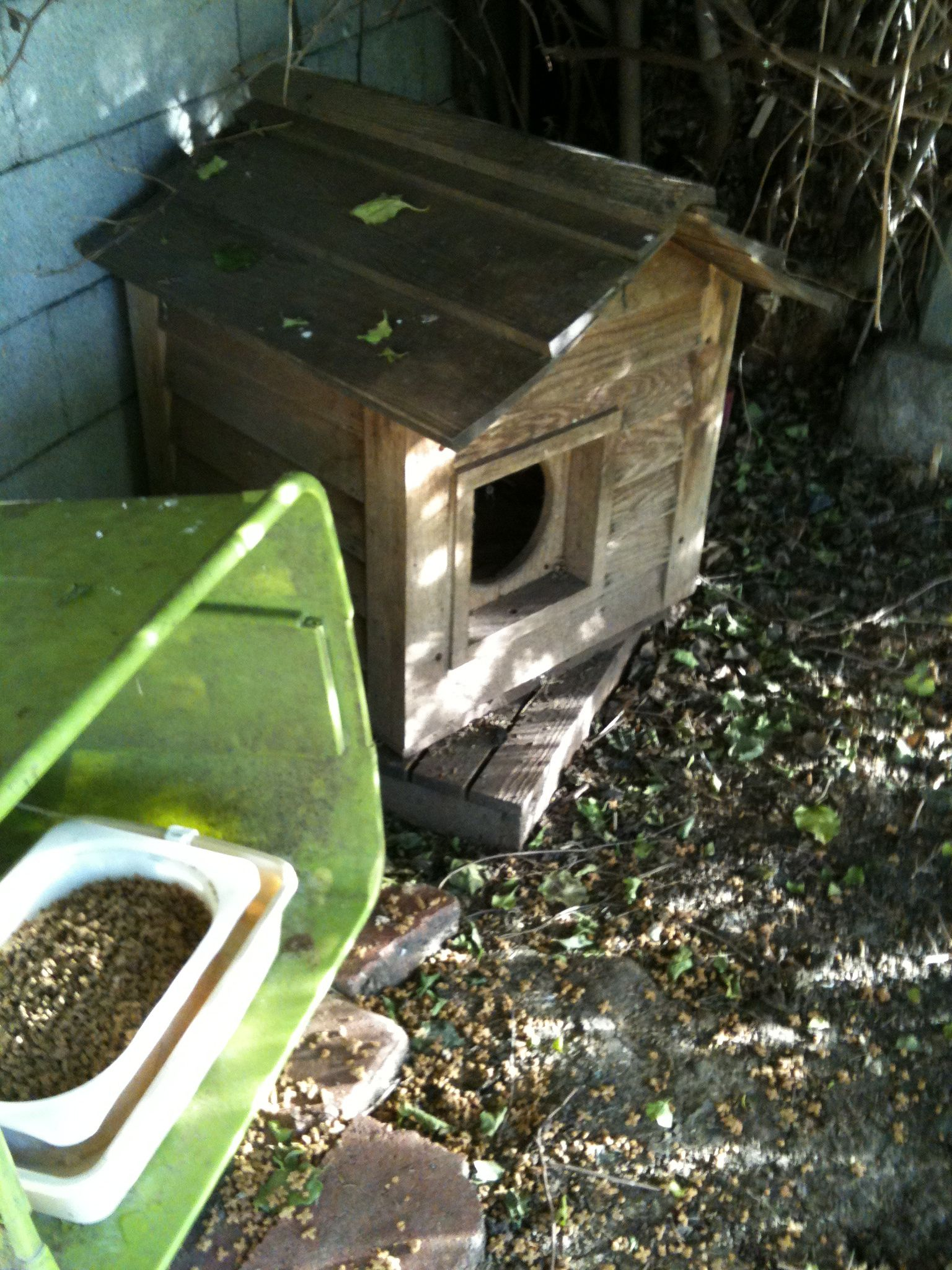 8 Must Haves for a TopNotch Feral Feeding Station
