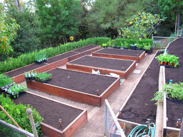 Hardscaping 101 Drip Irrigation Gardenista Garden Layout Vegetable Vegetable Garden Design Vegetable Garden Raised Beds