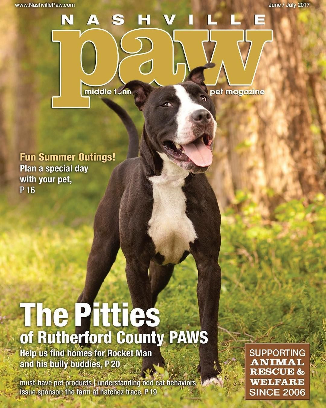Nashville Paw is Nashville's only petfocused magazine