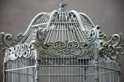 ~ ornate bird cage