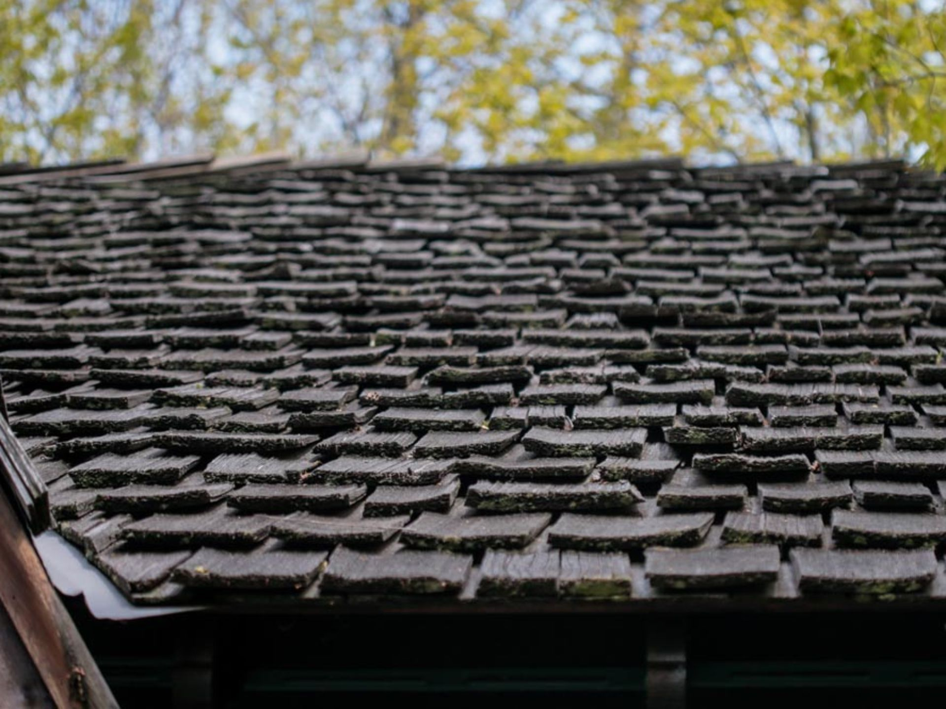 1 Of A Kind Home On 87 Acres Has Waterfall Cedar Sauna Wood Shingles Roof Shingles Wood