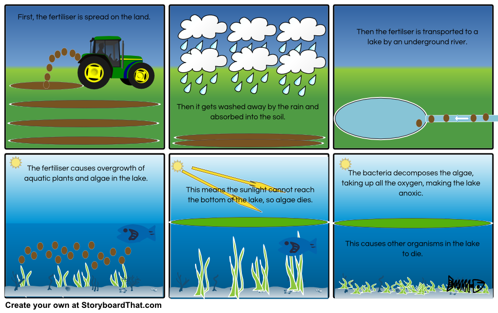 The Eutrophication Process Storyboard By  Quenton4
