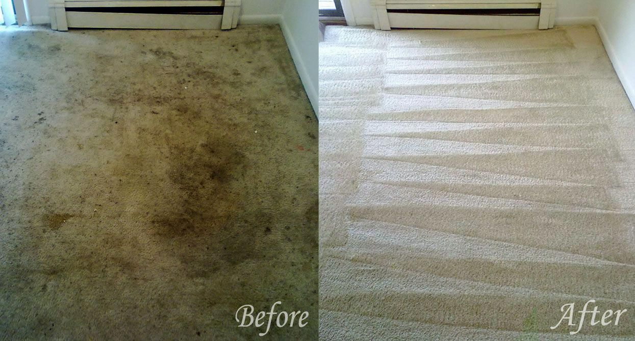 Why Do Carpets Need To Be Cleaned Regularly It S Easy To Think That The Only Reason You Need Your How To Clean Carpet Carpet Cleaning Hacks Diy Carpet Cleaner