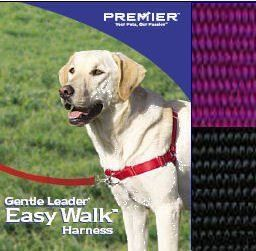 Easy Walk Harness Small Medium Deep Purple By Premier Http