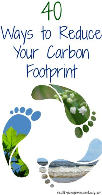 Photo of 40 Ways to Reduce Your Carbon Footprint | Kyndra Holley