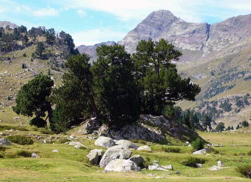 El Valle De Benasque A La Sombra De Los Tresmiles Estaciones De Esqui Valle Viajes