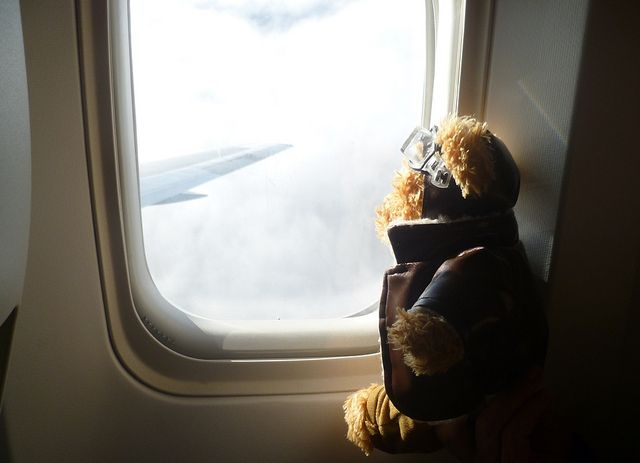 Misiu on the way to Gran Canarie | Our lovely teddy bear