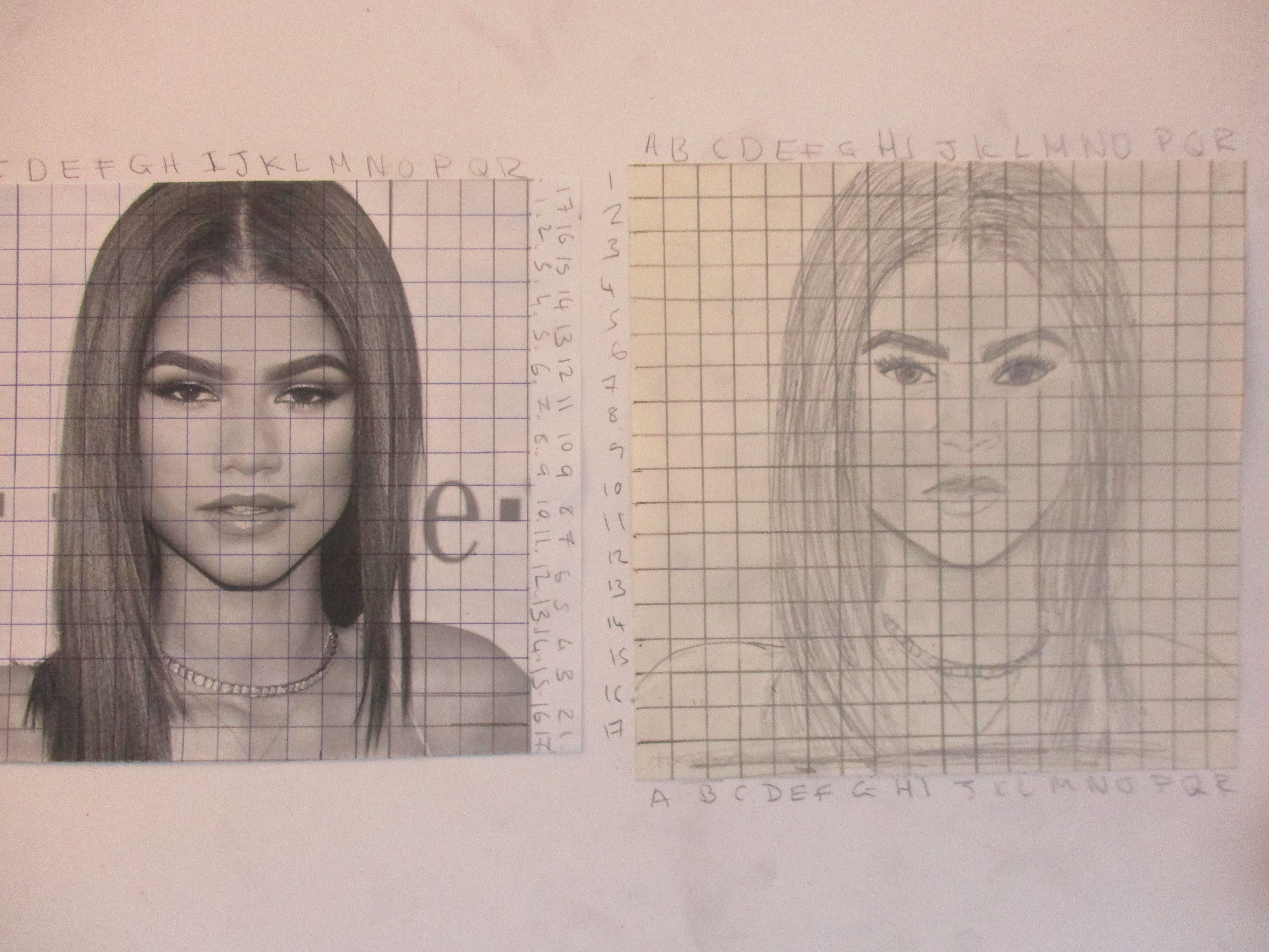 Tonal Drawing Of Portraits Using The Grid Method With