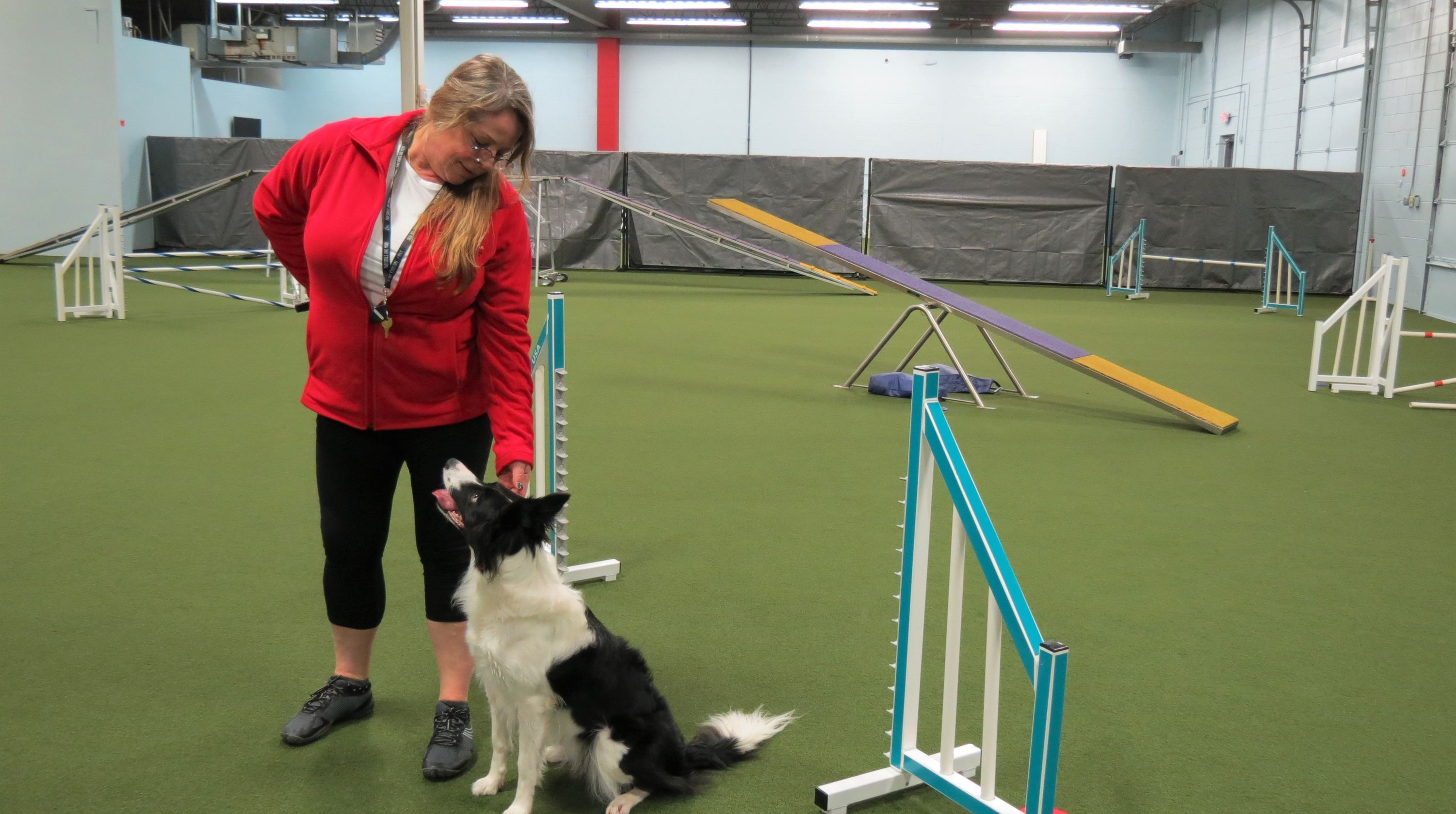 Dog Training Facility Redline Opening Soon In Germantown Dog