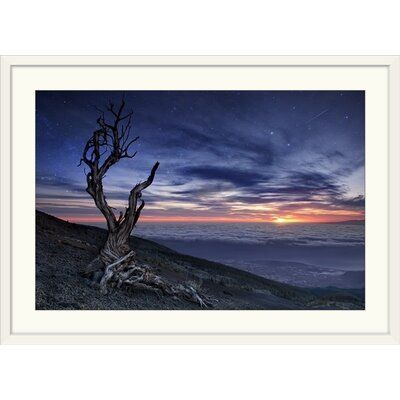 Great Big Canvas Beyond the Sky by Andrea Auf Dem Brinke, print wall art. A dead tree with twisted branches sits on a hillside overlooking a valley of clouds and a dramatic sunset. Format: White Frame, Size: 28